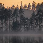 Night Mist on a Finnish Lake by seymourpics