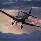 Spitfire Sunset by Nigel Bangert