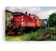 Train 8159 Canvas Print
