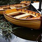 Boats for Hire, Richmond, Tasmania by Odille Esmonde-Morgan