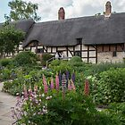 Ann Hathaway's Cottage , Stratford Upon Avon  UK 2 by Pauline Tims