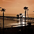 California Sunset by Ann  Van Breemen
