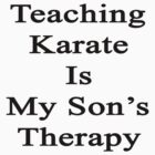 Teaching Karate Is My Son's Therapy  by supernova23