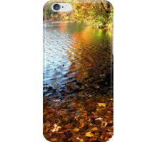 Autumn Splendor iPhone Case/Skin
