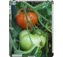 Red and Green Tomatoes by Holly Cannell iPad Case/Skin