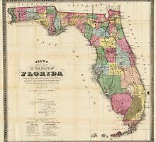 Vintage Map of Florida (1870)  by BravuraMedia