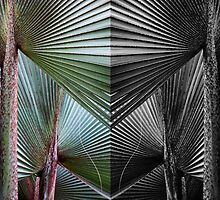 Palms layered & mirrored by Bruce Bischoff
