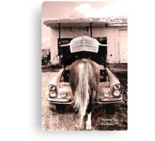 One horse town Canvas Print