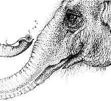 An elephant's faithful 100% by Inkspot by M.R.  Inkspot