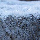 Granite Lamington by Derwent-01