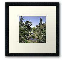 Duck Pond, Botanical Gardens Framed Print