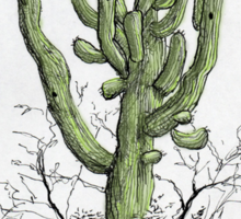 A Giant Saguaro Cactus of Southern Arizona * Sticker