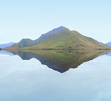 Melaleuca Reflections by Carole-Anne