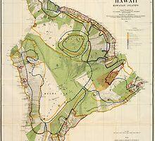 Vintage Map of Hawaii Island (1906) by BravuraMedia