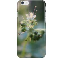 Spring flowers - 2011 iPhone Case/Skin