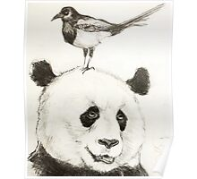 Panda and the Magpie Poster