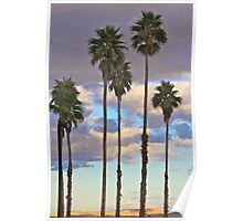 Palm Trees and Desert Sunset Poster