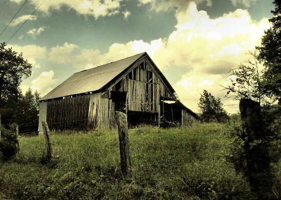 Pure Country by © Bob Hall