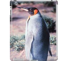 King Penguin on Heard Island iPad Case/Skin