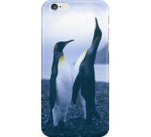 King Penguins iPhone Case/Skin