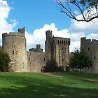 Bodiam Castle  by hootonles