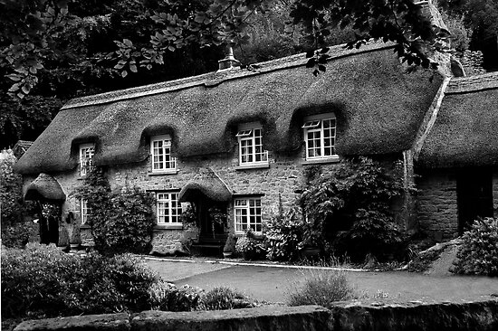Chocolate Box Cottage in B & W by rodsfotos