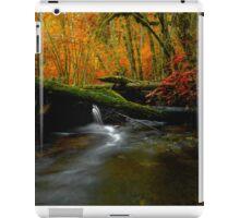 The Big Glow  ~ Whittaker Creek ~ iPad Case/Skin