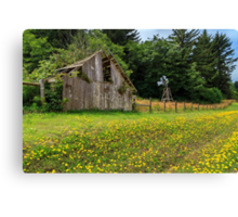 Windmill Flowers And A Barn Canvas Print