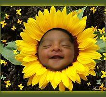YOU ARE MY SUNSHINE - BABY IN SUNFLOWER JUST FOR SHOW by ╰⊰✿ℒᵒᶹᵉ Bonita✿⊱╮ Lalonde✿⊱╮