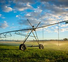 Irrigation Sunset 3 by Candice84