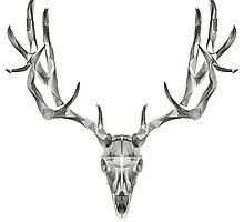 Deer Skull Animal Line Art by thorstenschmitt