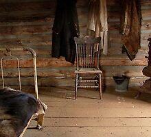 Old Montana Farmhouse by AnnDixon