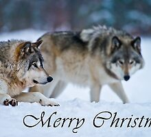 Timber Wolf Christmas Card - English - 17 by WolvesOnly