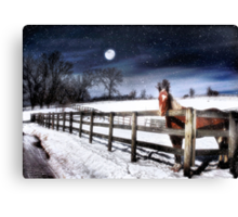 Moonlit Canvas Print