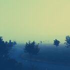 Foggy Day by karlmagee