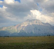 Vimy Ridge, Waterton National Park by Vickie Emms