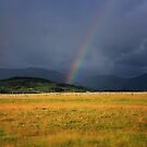 At the End of the Rainbow by Vickie Emms