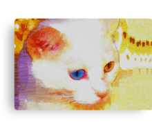 Cat portrait Canvas Print