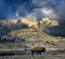 3304 by peter holme III