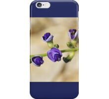 Purple Bloom - African Wild Flowers iPhone Case/Skin
