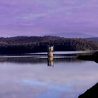 Thomson Reservoir by Chris Chalk