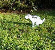 No Pooping by Sue Martin