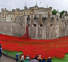 The Tower of London Remembers WWI by Ludwig Wagner