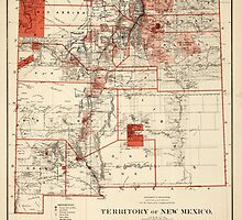 Vintage Map of New Mexico (1882) by BravuraMedia