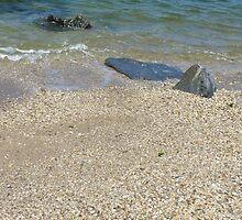 Rocks Along the Shore by rowerdani13