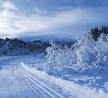 Winter wonderland by GryThunes