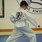 Tae Kwon Do by Lorelle Gromus