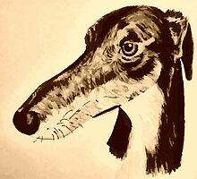Quirky saluki/ lurcher/ greyhound by rayemond
