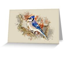 Bluejay Watercolor Art Greeting Card