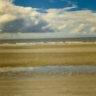 Dreamy beach HHI South Carolina  by KSKphotography